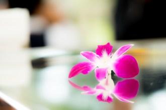 鏡面テーブルの上に置かれた花びら