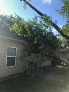 Wind Damage Exterior