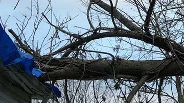 Wind & Storm Damage Restoration