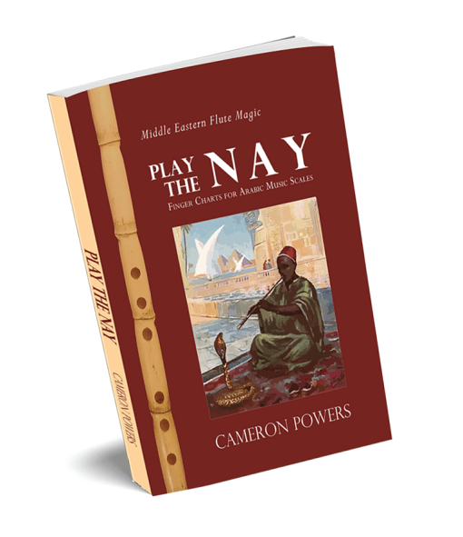 Play the Nay Book