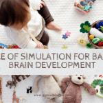 infant simulation brain growth