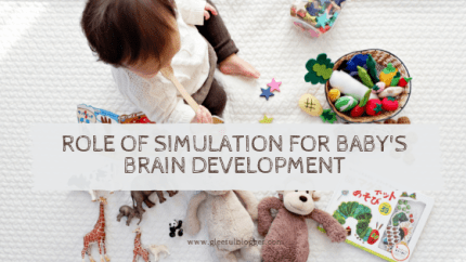 infant simulation brain growth