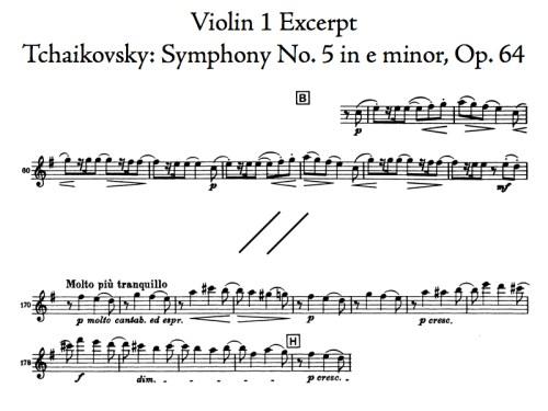 Violin Excerpt T5