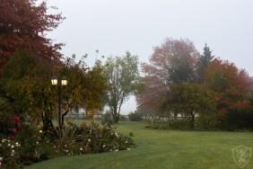 Gardens (61)