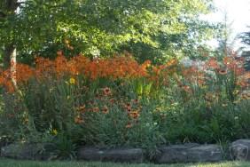 Gardens (81)
