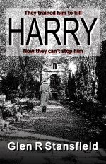 Harry by Glen R Stansfield. How I go about writing novels