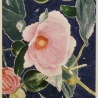 Blushing Pink by Margaret Newman
