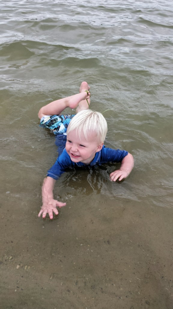 brix in water