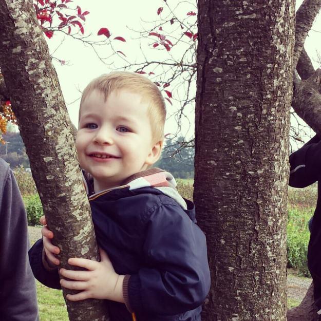 Sam in tree