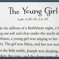 The Young Girl: Part 1 In a Seven-Week Bible Study for Women