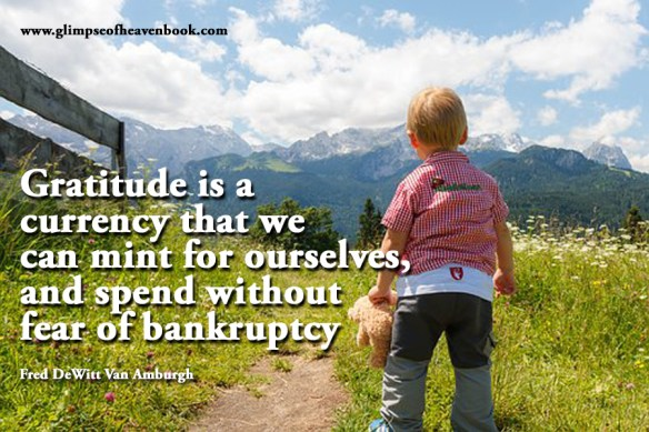 Gratitude is a currency that we can mint for ourselves, and spend without fear of bankruptcy Fred DeWitt Van Amburgh