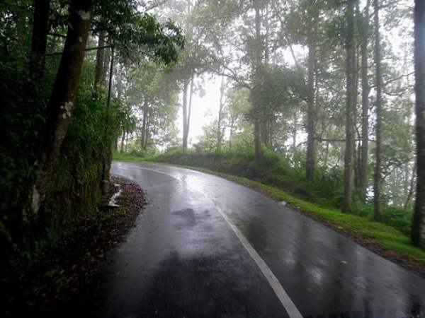 Travel-to-Bali-misty-road-Glimpses-of-The-World