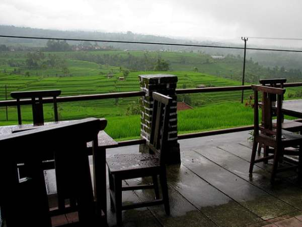 Travel-to-Bali-rice-fields-local-restaurant-view-Glimpses-of-The-World