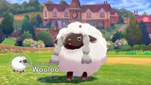 Pokemon Sword and Shield Wooloo