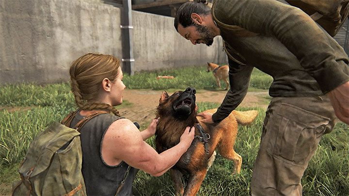 The Last of Us Part II Dogs Naughty Dog