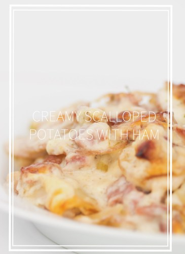 plate of creamy scalloped potatoes with ham with sliced potatoes, ham and a cheese sauce