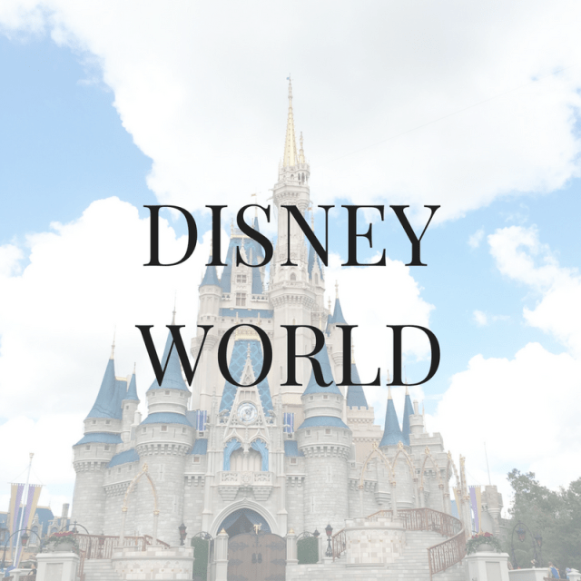 Disney World Adult Travel Blogger Recommendations