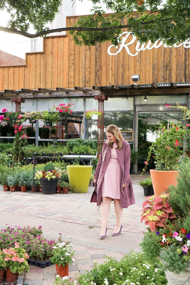 Pink Dress and Purple Trench Coat for Fall | Velvet Pumps | Best Deals of the Nordstrom Anniversary Sale