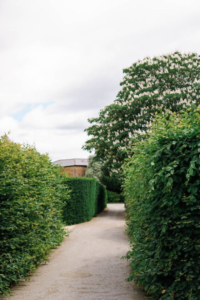 Rose Gardens at Hampton Court Palace | The Best Mazes in the UK | Hampton Court Palace Maze