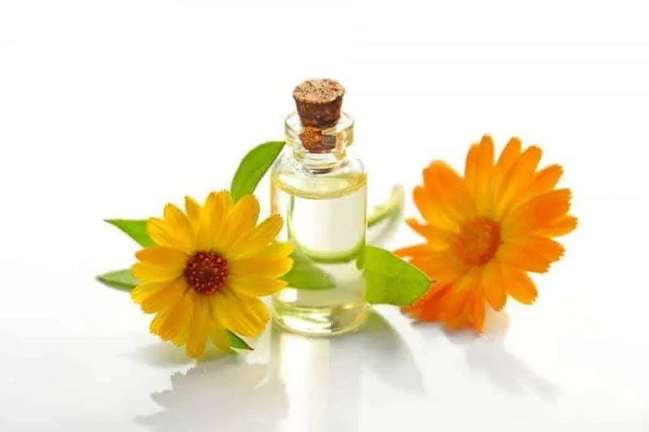 5 natural oils to solve different hair issues