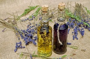 5 natural oils to solve different hair issues lavender oil