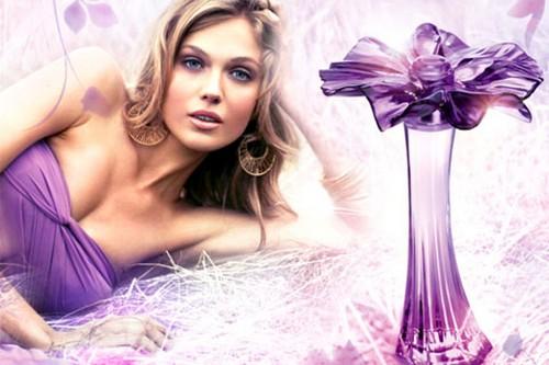 Muse Oriflame perfume