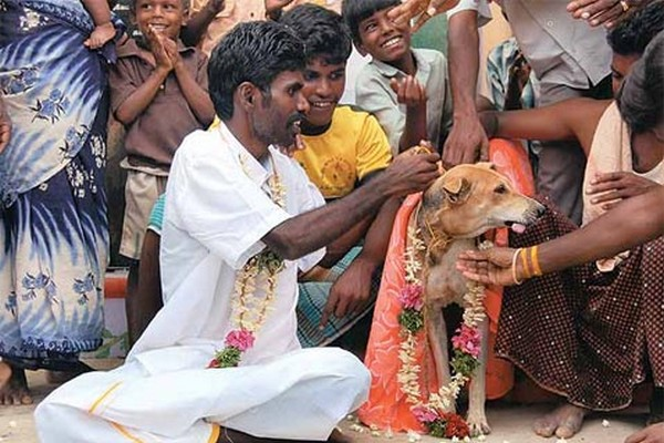 A man married a dog in India