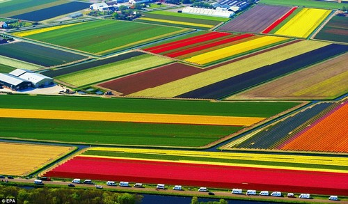 Natural Colorful Places