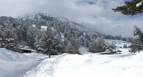 Nathia Gali Winter Destinations In Pakistan