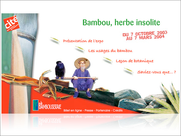 Bambou, l'herbe insolite