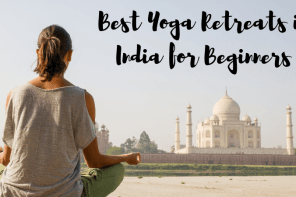 Best Yoga Retreats in India for Beginners