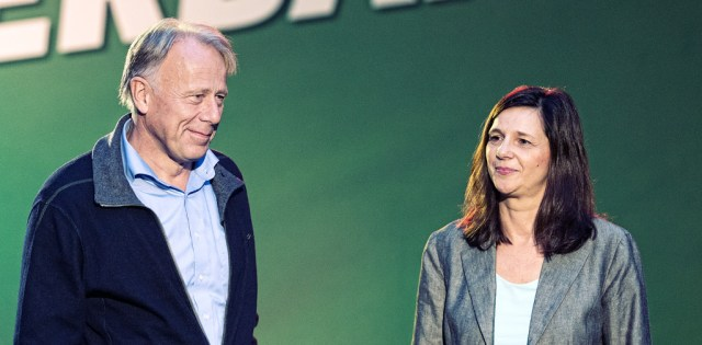 green party in election campaign