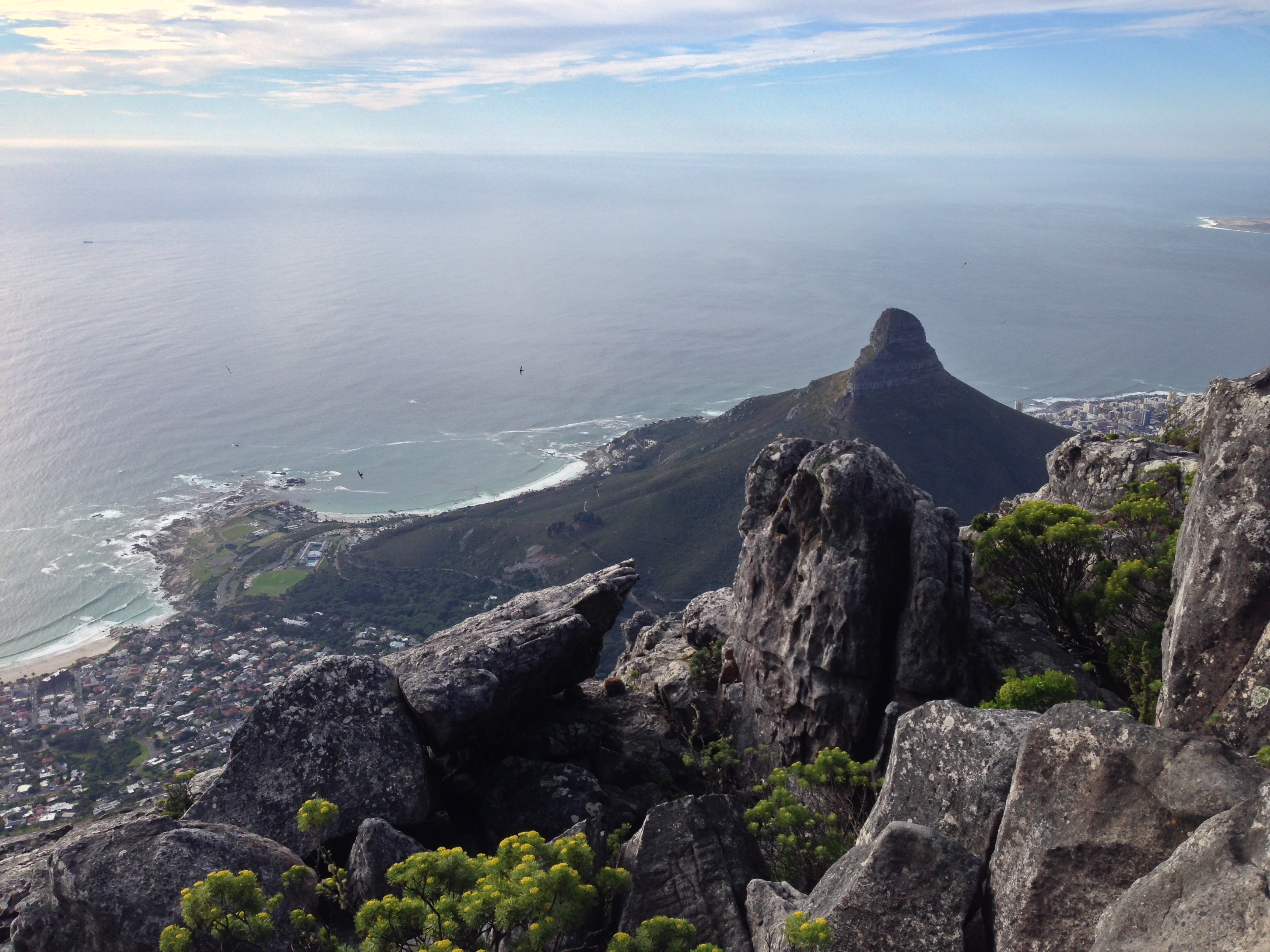 Vacation Cape Town