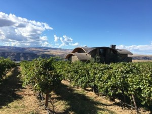 washington state wineries
