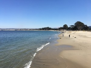 Best places to visit Monterey CA