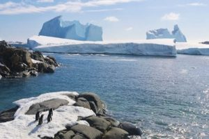 Environment Conservation Antarctica