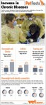 Pet Facts- Increases in Chronic Diseases