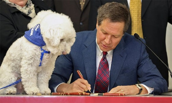 Sammy, a Bichon, watched as Gov. John Kasich signed a bill into law today that establishes new regulations on the care and treatment of animals housed in large-scale establishments. Sammy and her owner, Barbara McKelvey, came down from Wadsworth, Ohio for the signing of the bill. Photo Credit: Kyle Robertson, The Columbus Dispatch