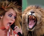 Miley And Lion