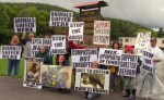 animal activists protest Cattaraugus County SPCA animal shelter
