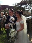 Dog in wedding ceremony with bride and groom