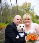 Dog In Wedding picture
