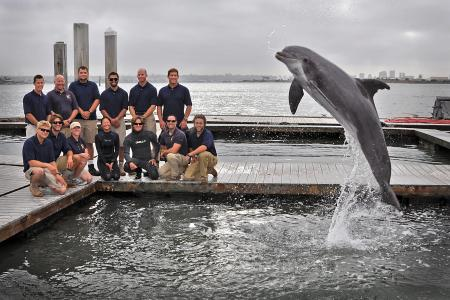 A specially trained Navy dolphin helped with the discovery and recovery of the Howell torpedo. Photo Credit: Alan Antczak
