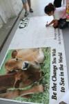 students make banner for catskill animal sanctuary farm animals
