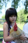 girl holds rooster at catskill animal sanctuary