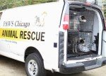 PAWS Chicago van with oklahoma rescue dogs