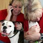 Chance and Oma, woman and dog reunited after oklahoma tornado
