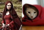 Game Of Thrones Red Priestess