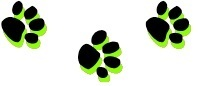 three paw prints rating system