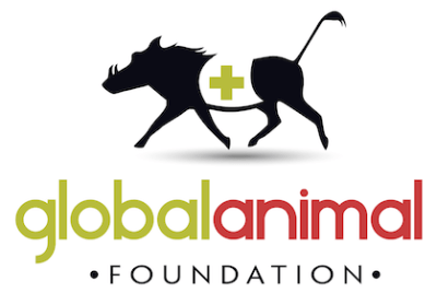 Global Animal Foundation charity logo